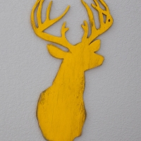 Żółty jeleń / Yellow Deer