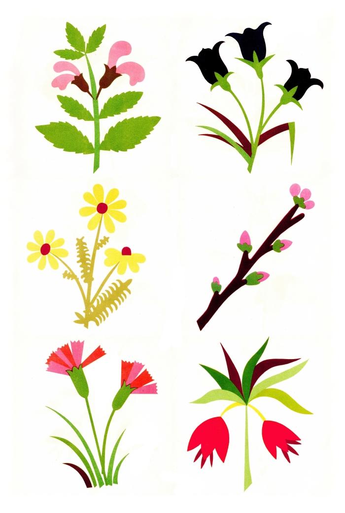 kwiaty2OK
