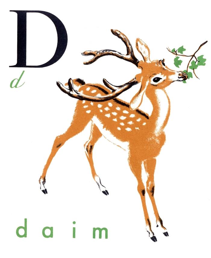 jelonek / deer